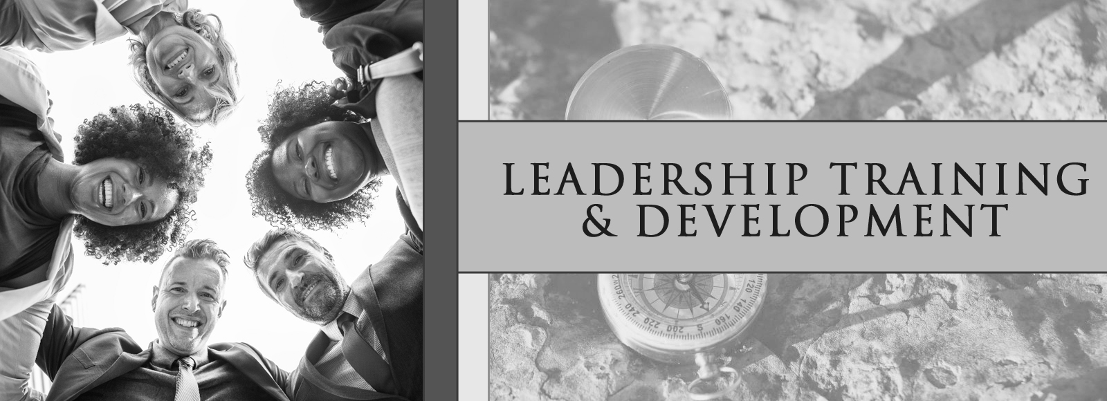 Leadership & Talent Development